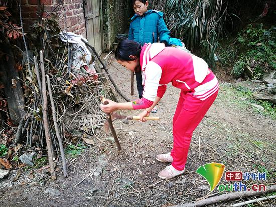 图为杨小林的姐姐在劈柴。周龙 供图