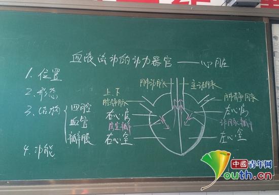 图为江南大学研支团成员杨蕾画的心脏结构图. 杨蕾 供图