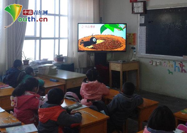 中国 河南/学生认真观看视频《乌鸦反哺》